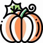 Pumpkin Icon Flaticon Icons