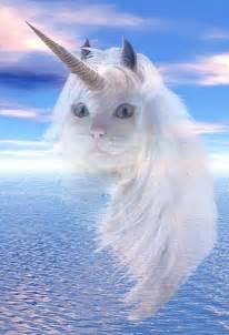 unicorn cat punch unicorn cat link roundup