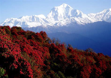 view annapurna range