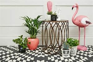 Des flamants roses dans la deco joli place for Photo de jardin exotique 14 des flamants roses dans la deco joli place