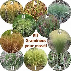 Plantes Vivaces Pour Massif : amenagement jardin avec graminees stunning comment bien ~ Premium-room.com Idées de Décoration