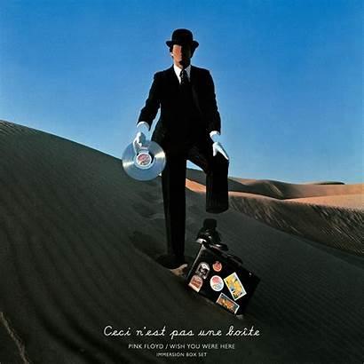 Ray Blu Floyd Pink Covers Wish Were