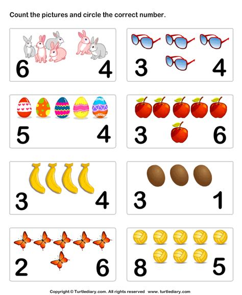 count  identify number  objects worksheet turtle diary