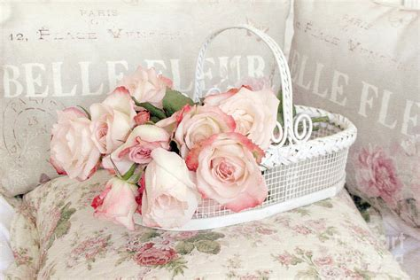 shabby chic pink roses dreamy cottage shabby chic pink roses in white basket belle fleur french roses photograph by