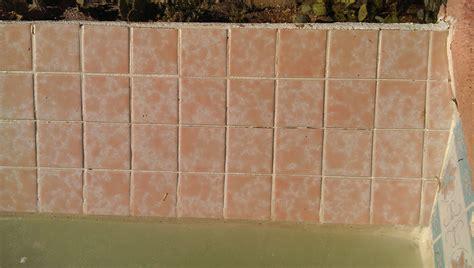 portfolio pool tile cleaning