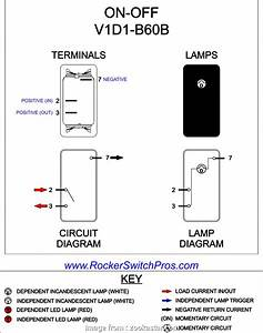 Carling Toggle Switch Wiring Diagram Practical Carling