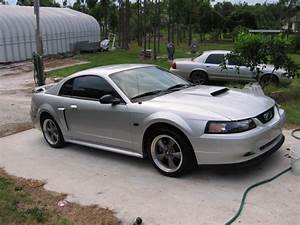Ford Mustang 99
