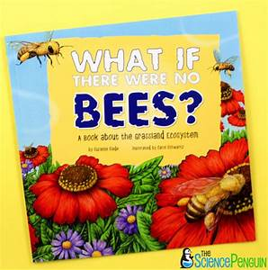 Picture Book Science Lesson  Bees And Ecosystems  U2014 The