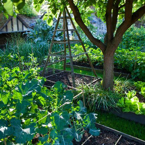 garden allotment garden design ideal home