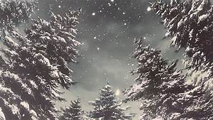 Snow Winter GIF - Find & Share on GIPHY