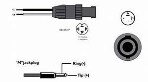 Speakon Wiring Diagram