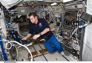 Space in Images - 2008 - 10 - NASA astronaut Chamitoff ...