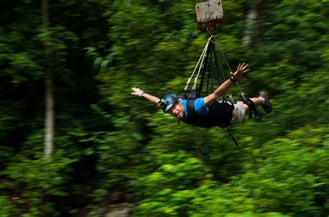 jump swing bungy jumping in cairns queensland australia
