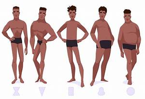 Body type theory for men