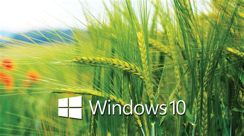 theme bureau windows laptop hd wallpapers for windows 10 pixelstalk