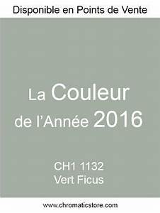 lin naturel dulux valentine survlcom With peinture couleur lin nuancier 1 25 melhores ideias sobre nuancier peinture no pinterest