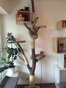 Katzenkratzbaum Selber Machen : die besten 25 kratzbaum selber machen ideen auf pinterest katzenspielzeug selber machen ~ Yasmunasinghe.com Haus und Dekorationen