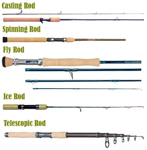 fishing rods   equipment anglingcouncilirelandie