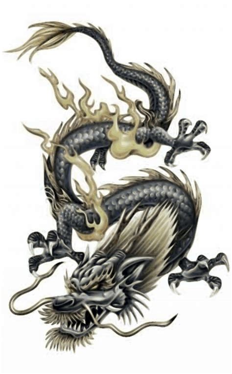 Chinese Dragon Tattoo Designs  Tatto Pinterest