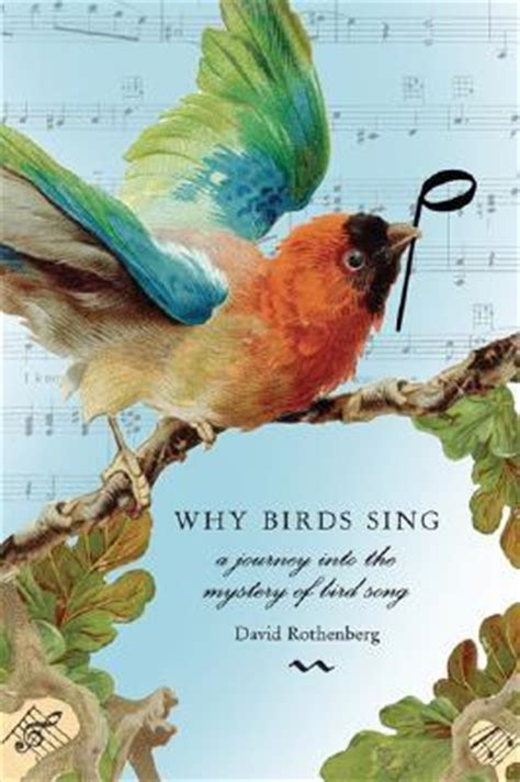 why birds sing a journey into the mystery of birdsong by