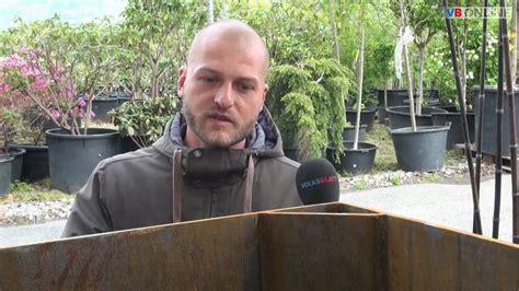 Bambus Wuchert Was Tun by Bambus Garten Boden Boden Holz Team Reuther