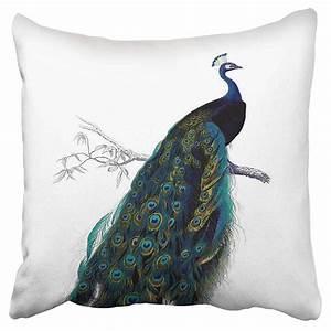 Eccot, Filler, Vintage, Retro, Blue, Elegant, Colorful, Peacock, Pillow, Case, Pillow, Cover, 20x20, Inch