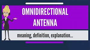 What is OMNIDIR... Spiteful Meaning