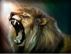 art lion roar wallpape...