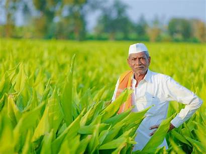 Indian India Agriculture Farmer Transforming Field Issue