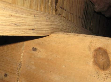Sagging Floor Joist by Sagging Crawl Space Problems In Mississauga Toronto