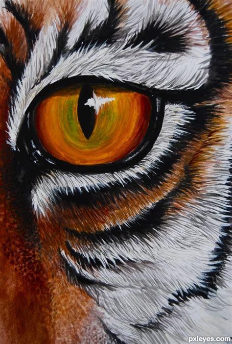 drawing guide  making   eye   tiger