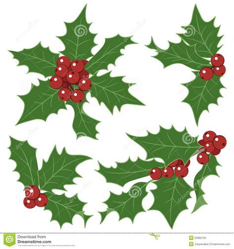 christmas holly decorations royalty  stock photo