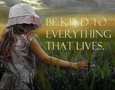 quotes kindness  animals quotesgram