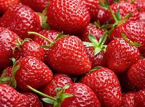 Erdbeeren Richtig Pflanzen : sind erdbeeren n sse ~ Lizthompson.info Haus und Dekorationen