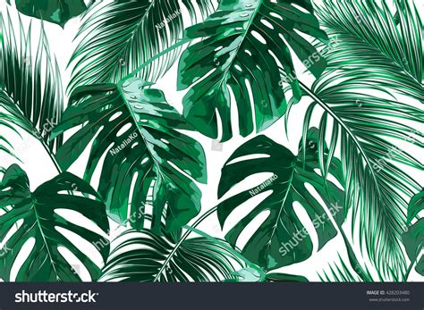 tropical palm leaves jungle leaves seamless stock vector