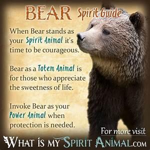 Mammal Symbolism & Meaning | Spirit, Totem, & Power Animal
