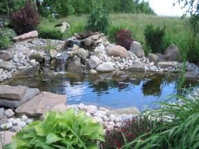 koi fish pond how to take care of koi fish keep pond fish healthy and disease free koi fish care