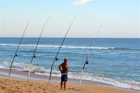 long beach island nj fishing report   fishing