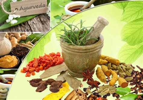 what are popular ayurvedic medicines shop vimaxbanyumas