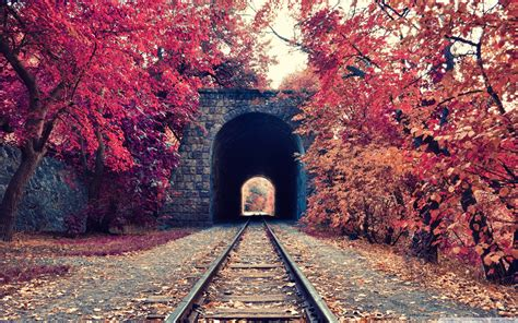 Fall Tunnel Railway Trees Armenia Wallpapers Hd Desktop And Mobile Backgrounds