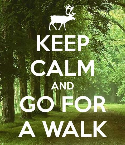 Keep Calm And Go For A Walk Poster  Urska  Keep Calmomatic