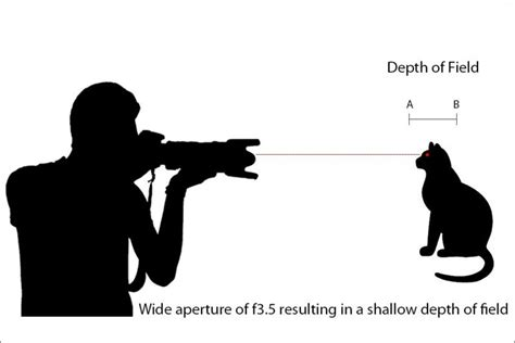 a comprehensive beginner 39 s guide to aperture shutter