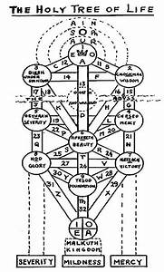 The Holy Tree Of Life