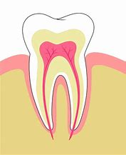 Hd wallpapers blank diagram of the tooth love wallpapers8ckfo hd wallpapers blank diagram of the tooth ccuart Choice Image