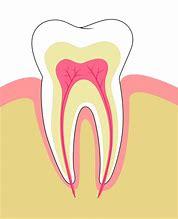Hd wallpapers blank diagram of teeth 530design hd wallpapers blank diagram of teeth ccuart Choice Image