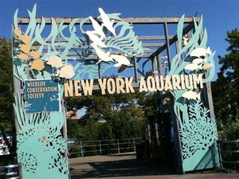 new york aquarium at coney island picture of coney island tripadvisor