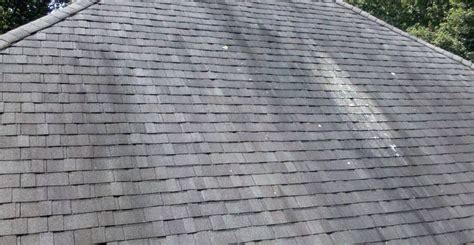 Ask Wet & Forget See The 4 Reasons Wet & Forget Outdoor Is Red Roof Inn Dayton Mall Ohio How To Clean Clay Tile Installing Standing Seam Metal Roofing Details North Alabama Florence Al Paint Grey Spray Insulation Under Solar Panel Mounting Clip Royal Palm Boca