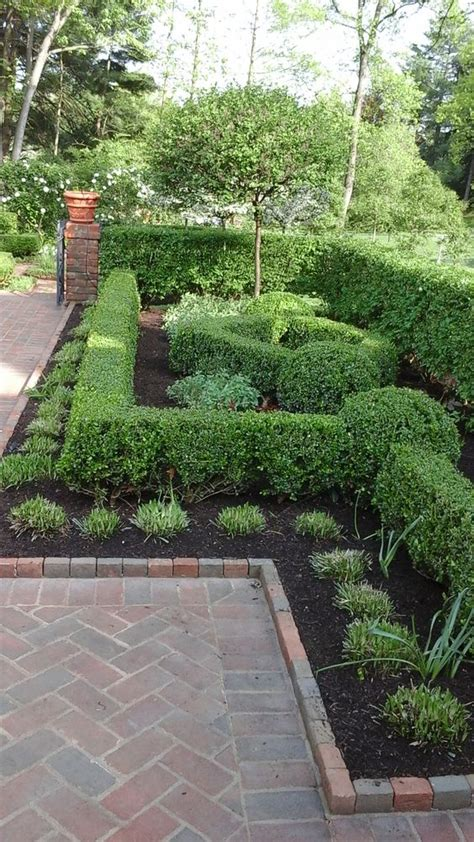beautiful boxwood gardens   grab  attention