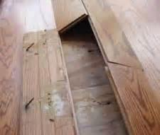 Hardwood Floor Water Damage Repair in Tampa, FL
