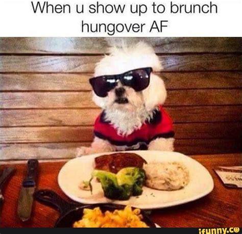 Funny Breakfast Memes - lol meme true breakfast hungover true pinterest meme memes and humor